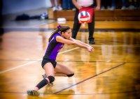 gra w siatkówkę